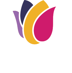 Tulip Entertainment